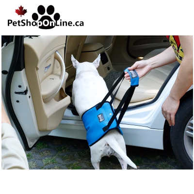 Dog lifting harness