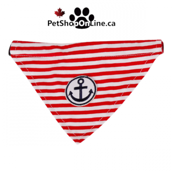 Marin style bandana + collar for dog