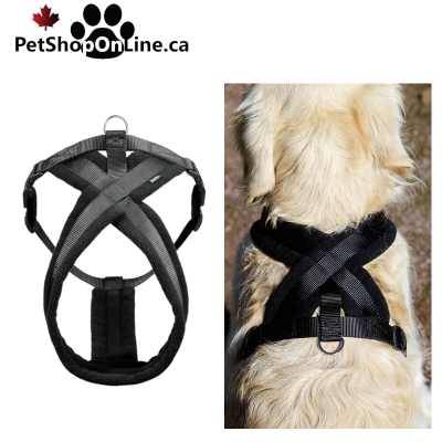High quality quilted harness, for dog