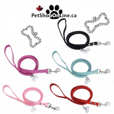 Suede leash with jewel