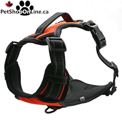 Professional quality harness 4 functions - Orange