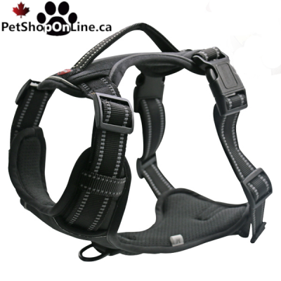 Professional quality harness 4 functions - Black