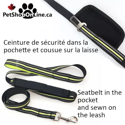 Leash 2 functions for walk and car.