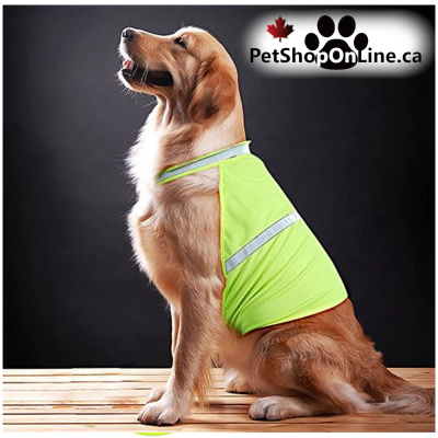 Reflective safety jacket for dog