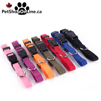 Ultra-resistant nylon dog or cat collar available in 7 colors and 3 sizes