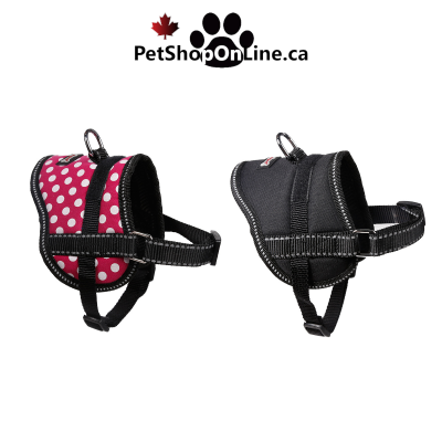 Reinforced harness on the back for dogs and cats