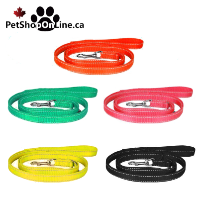 Reflective nylon leash for dog or cat