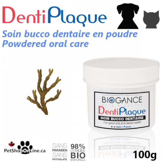 Oral care powder treatment for dogs or cats