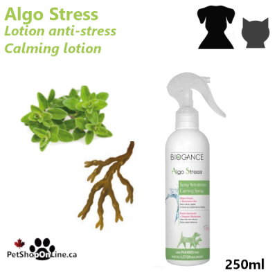 Anti-stress lotion, for dogs or cats