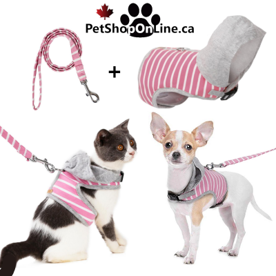 Harness / Hooded Vest for Cat or Small Dog + Leash Assorted