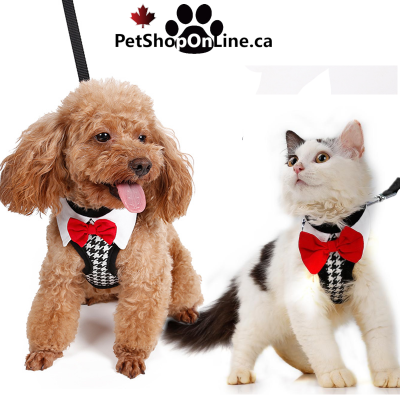 31/5000 Tuxedo harness with bow tie, for cat or little dog